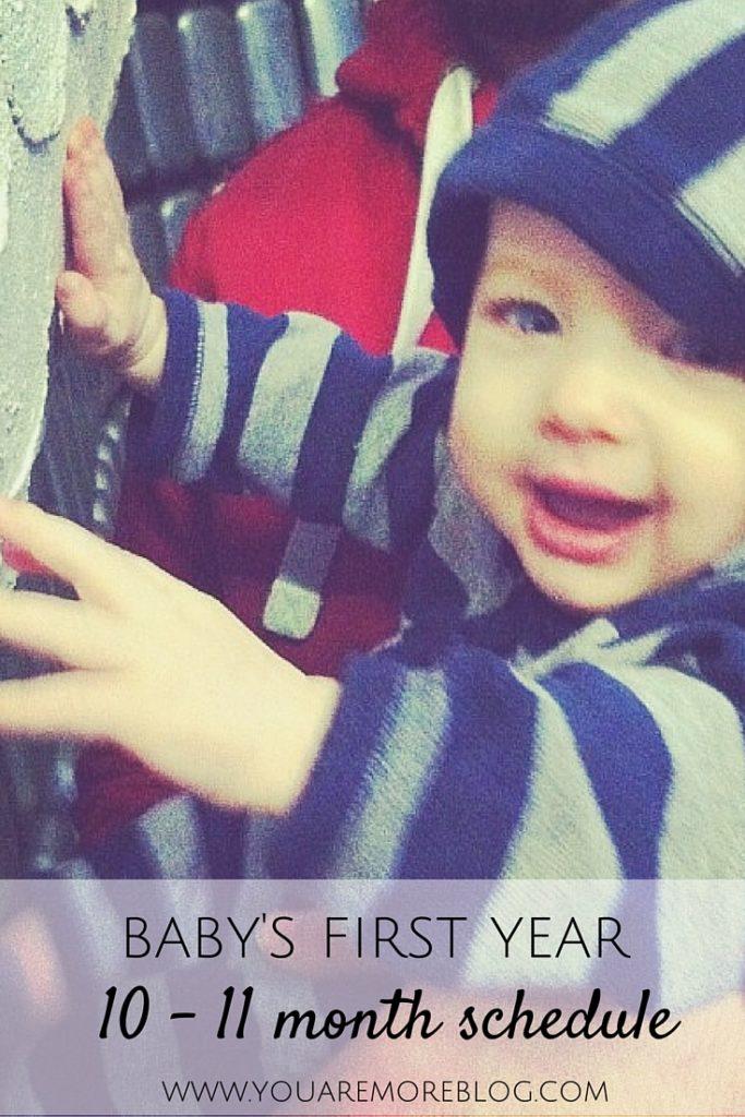 Baby's First Year: Schedule 10 Months to 11 Months