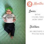 Elyse 2.3 Month Update