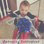 Embracing Toddlerhood: All Things Boy