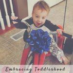 Embracing Toddlerhood: All Things Boy